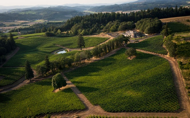 Alexana Winery<br>Willamette Valley, Oregon